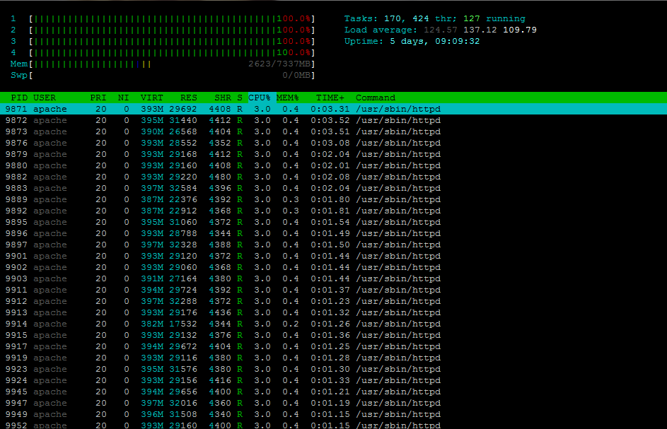 server-load-carico-linux