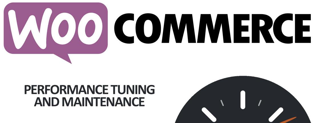 woocommerce-performance-manutenzione